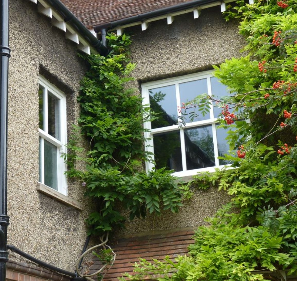 Cheap window options, custom fit and range of sizes